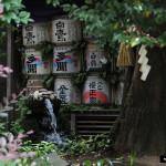 Japon 2014 / Jour 02 . Tokyo - 04