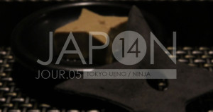 Japon 2014 / Jour 05 . Tokyo Ueno Ninja - Header