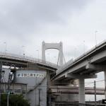 Japon 2014 / Jour 06 . Tokyo Safari Photo - 03