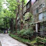 Japon 2014 / Jour 09 . Tokyo Shinjuku & Roppongi - 01