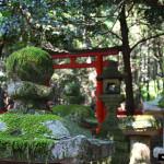 Japon 2014 / Jour 14 . Nara - 05