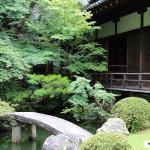 Japon 2014 / Jour 15 . Kyoto - 02