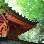 Japon 2014 / Jour 16 . Kyoto Arashiyama - 01