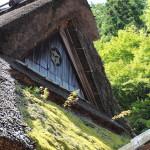 Japon 2014 / Jour 16 . Kyoto Arashiyama - 02