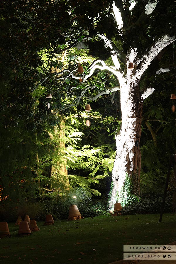Beautiful jardin des plantes nantes de nuit ideas design for Swing jardin nantes 2015