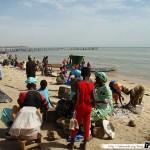 Sénégal 23 - 120310 - Port de pêche de M Bour