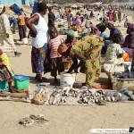 Sénégal 24 - 120310 - Port de pêche de M Bour