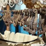 Sénégal 25 - 120310 - Port de pêche de M Bour - Hyppocampe