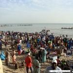 Sénégal 32 - 120310 - Port de pêche de M Bour - Arrivée des Pêcheurs