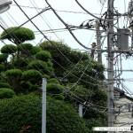 Japon Jour 2 – Tokyo 09