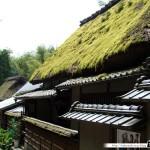 Japon Jour 12 – Kyoto 12
