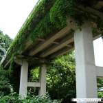 Japon Jour 12 – Kyoto 13