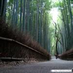 Japon Jour 12 – Kyoto 26